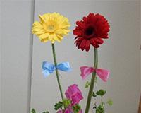 花遊び教室